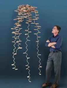 蟻の巣 模型