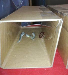 ネズミ粘着シート組み立て